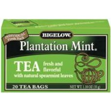 BT-Plantation Mint